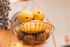 Προϊόντα στην ένωση του καλαθιού Στοκ φωτογραφία με δικαίωμα ελεύθερης χρήσης