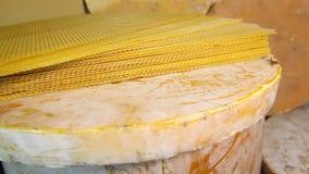 Προϊόντα των livelihoods των μελισσών Προϊόντα της μελισσοκομίας απόθεμα βίντεο