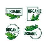 Προϊόν φύσης, doodle οργανικά πράσινα εμβλήματα φύλλων, αυτοκόλλητες ετικέττες Στοκ Εικόνες