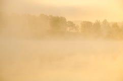 πρωί λιβαδιών ομίχλης πέρα από το ύδωρ γύρω από τη λίμνη αυξηθείτε τη σημύδα Στοκ φωτογραφίες με δικαίωμα ελεύθερης χρήσης