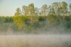 πρωί λιβαδιών ομίχλης πέρα από το ύδωρ γύρω από τη λίμνη αυξηθείτε τη σημύδα Στοκ εικόνες με δικαίωμα ελεύθερης χρήσης