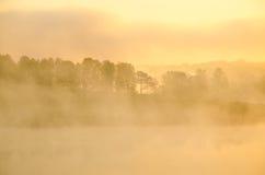 πρωί λιβαδιών ομίχλης πέρα από το ύδωρ γύρω από τη λίμνη αυξηθείτε τη σημύδα Στοκ Εικόνα