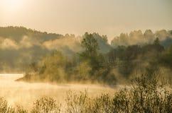 πρωί λιβαδιών ομίχλης πέρα από το ύδωρ γύρω από τη λίμνη αυξηθείτε τη σημύδα Στοκ φωτογραφία με δικαίωμα ελεύθερης χρήσης