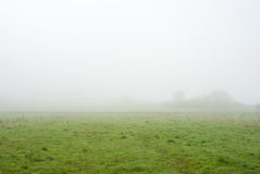 πρωί λιβαδιών ομίχλης πέρα από το ύδωρ Δέντρα στην ομίχλη ομιχλώδης καιρός Κακή διαφάνεια Στοκ Φωτογραφίες