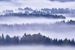 πρωί λιβαδιών ομίχλης πέρα από το ύδωρ Στοκ φωτογραφία με δικαίωμα ελεύθερης χρήσης