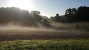 πρωί λιβαδιών ομίχλης πέρα από το ύδωρ στοκ εικόνα