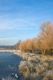 πρωί λιμνών παγετού Στοκ φωτογραφία με δικαίωμα ελεύθερης χρήσης