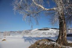 Πρωί Μαρτίου Στοκ Εικόνες
