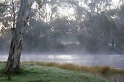 Πρωί ποταμών της Misty Στοκ εικόνες με δικαίωμα ελεύθερης χρήσης