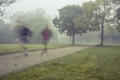 Πρωί που οργανώνεται στο πάρκο Στοκ εικόνες με δικαίωμα ελεύθερης χρήσης