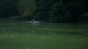 Πρωί που πυροβολείται του kayaker που κωπηλατεί μέσω της λίμνης απόθεμα βίντεο