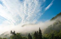 Πρωί στα βουνά ομιχλώδες πρωί Carpathians, Ουκρανία Στοκ Εικόνες