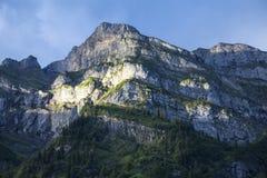 Πρωί στα βουνά dombay αιχμές βουνών βουνών Καύκασου όρη Ελβετός Switzerla Στοκ εικόνες με δικαίωμα ελεύθερης χρήσης