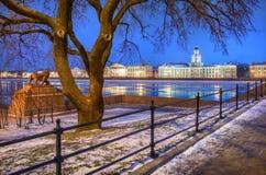 Πρωί στη Αγία Πετρούπολη με μια άποψη του Kunstkamera τ στοκ εικόνες