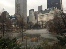Πρωί της Misty στο Central Park Στοκ Εικόνες