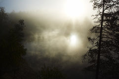 πρωί υδρονέφωσης Στοκ φωτογραφίες με δικαίωμα ελεύθερης χρήσης