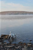 Πρωί φθινοπώρου στη λίμνη Στοκ φωτογραφία με δικαίωμα ελεύθερης χρήσης