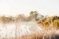 Πρωί φθινοπώρου της Misty στον ποταμό Η χλόη στο λιβάδι κάλυψε με το hoarfrost τους παγετούς του πρώτου φθινοπώρου στοκ φωτογραφία με δικαίωμα ελεύθερης χρήσης
