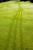 πρωί χλόης γκολφ δροσιάς Στοκ φωτογραφία με δικαίωμα ελεύθερης χρήσης