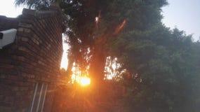 Πρωί στοκ φωτογραφία με δικαίωμα ελεύθερης χρήσης