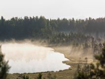 Πρωί Στοκ Εικόνες