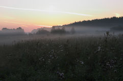 Πρωί Στοκ Εικόνα