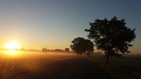 Πρωί Στοκ φωτογραφίες με δικαίωμα ελεύθερης χρήσης