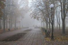 Πρωί Στοκ εικόνα με δικαίωμα ελεύθερης χρήσης