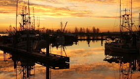 Πρωί Steveston, αποβάθρα Fishermans απόθεμα βίντεο