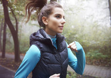 Πρωί workout στοκ φωτογραφία με δικαίωμα ελεύθερης χρήσης
