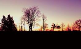 Πρωινά στο Bluff Στοκ Φωτογραφίες