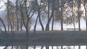 Πρωινού μιας νέας γυναίκας σε ένα πάρκο πόλεων κατά μήκος της όχθης ποταμού σε μια πυκνή ομίχλη Υγιής τρόπος ζωής σε οποιοδήποτε  φιλμ μικρού μήκους