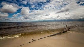 Πρωινό timelapse στην αμμώδη παραλία Μια σύνδεση το πρώτο πλάνο Ρόλος κυμάτων σε άλλος απόθεμα βίντεο