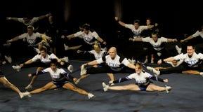 πρωτάθλημα του 2010 που η Φιν&l Στοκ φωτογραφία με δικαίωμα ελεύθερης χρήσης