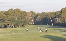Πρωταθλήματα γκολφ στοκ φωτογραφία με δικαίωμα ελεύθερης χρήσης