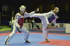 Πρωταθλήματα Taekwondo wtf Στοκ εικόνες με δικαίωμα ελεύθερης χρήσης