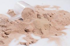Πρωτεϊνικές σκόνη και σέσουλα Στοκ εικόνες με δικαίωμα ελεύθερης χρήσης