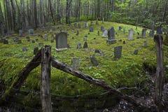 Πρωτόγονο νεκροταφείο στο δάσος Στοκ Φωτογραφίες