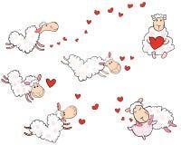 Πρόβατα αγάπης με μορφή των καρδιών Στοκ Φωτογραφίες