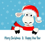 Πρόβατα και κάρτα Στοκ εικόνα με δικαίωμα ελεύθερης χρήσης