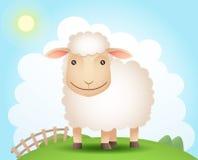 πρόβατα λόφων Στοκ Εικόνες