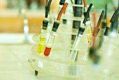 Πρόγραμμα σχολικής επιστήμης Στοκ φωτογραφία με δικαίωμα ελεύθερης χρήσης