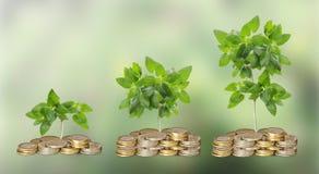 Πρόοδος της πράσινης επιχείρησης στοκ εικόνες