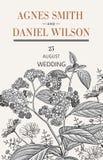Πρόσκληση γαμήλιων ευχαριστιών Όμορφη ρεαλιστική κάρτα ηλιοτροπίων Chamomile λουλουδιών Πλαίσιο, ετικέτα Διανυσματική βικτοριανή  Στοκ Εικόνες