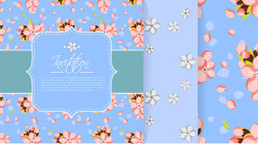 Πρόσκληση ή πρότυπο ευχετήριων καρτών με τα ρόδινα λουλούδια αμυγδάλων Άνευ ραφής υπόβαθρα συν Στοκ Εικόνες