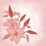 Πρόσκληση κρίνων λουλουδιών ή διάνυσμα ευχετήριων καρτών Στοκ εικόνες με δικαίωμα ελεύθερης χρήσης