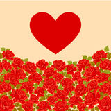 Πρόσκληση, πρότυπο ευχετήριων καρτών με τα τριαντάφυλλα και κόκκινη καρδιά διάνυσμα Στοκ Φωτογραφίες