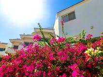 Πρόσοψη του ξενοδοχείου με Sheikh Sharm EL μπαλκονιών και παραθύρων, Αίγυπτος Στοκ Φωτογραφίες