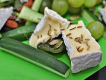 πρόστιμο τυριών Στοκ εικόνα με δικαίωμα ελεύθερης χρήσης