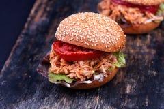 Πρόσφατα έτοιμο ατημέλητο σάντουιτς Joe Στοκ Φωτογραφίες